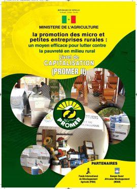 La promotion des micro et petites entreprises rurales : un moyen efficace pour lutter contre la pauvreté rurale