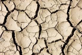 La crise alimentaire mondiale menace à nouveau