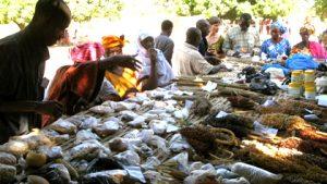 Journal de la 3e foire sous-régionale ouest-africaine des semences paysannes