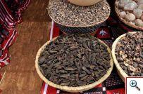 Burkina : Les femmes rurales à la reconquête des « produits forestiers non ligneux »