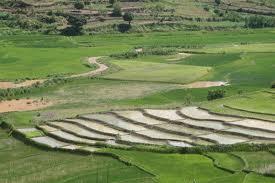 Fonds de développement agricoles à Madagascar : Le guide du CROA
