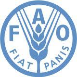 6-9 Novembre 2012, Ethiopie, FAO : Le rôle des organisations paysannes dans le développement des relations entre fournisseurs et acheteurs
