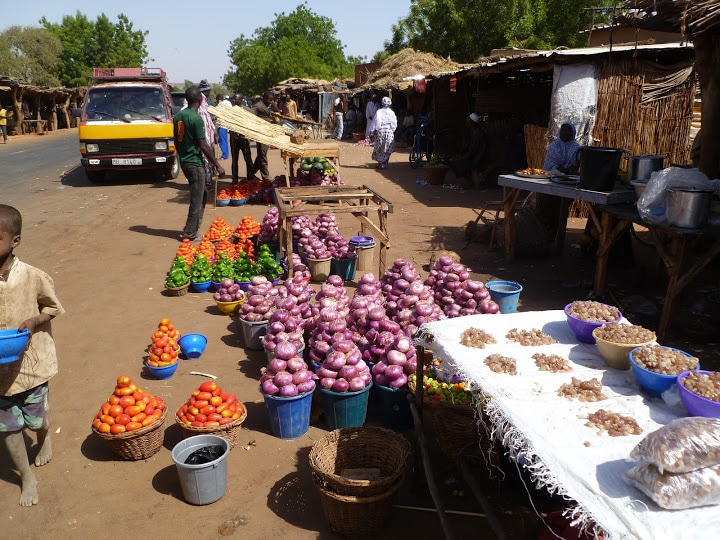 Série d'entretiens d'Inter-réseaux sur la résilience aux crises alimentaires au Sahel