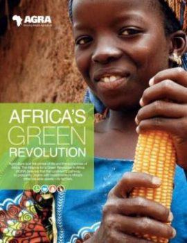 Révolution verte en Afrique : Un «miracle» à copier et à coller ?