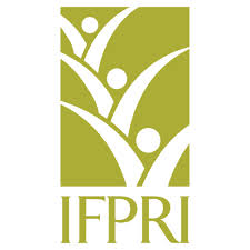 Fiche IFPRI (eng) : THE SUPPLY OF INORGANIC FERTILIZERS TO SMALL HOLDER FARMERS IN MOZAMBIQUE