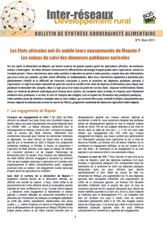 Bulletin de synthèse n°9 - Politiques agricoles et finances publiques en Afrique : éléments de suivi et d'évaluation depuis Maputo