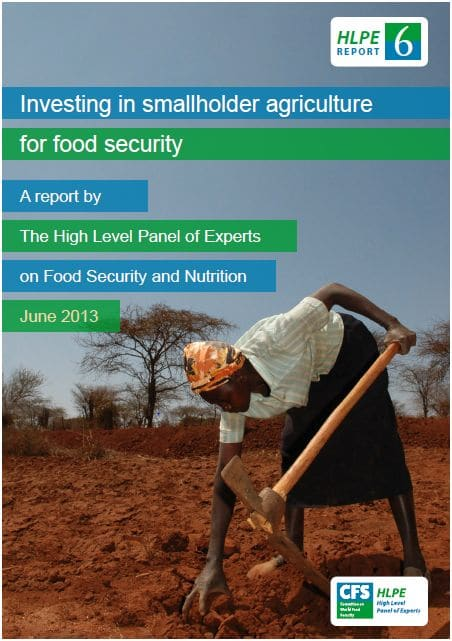 Rapport HLPE: Investing in smallholder agriculture for food security
