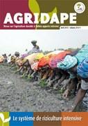 Agridape n°29 : Le système de riziculture intensive
