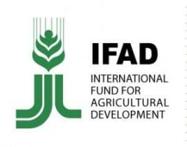 """Publication FIDA: bulletin """"spécial outils d'appui aux OP"""""""