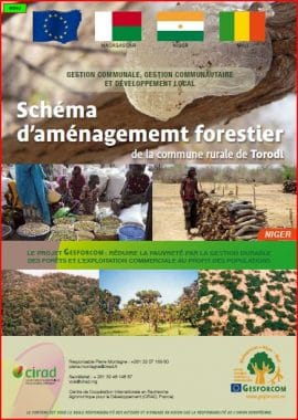 Brochure de valorisation des acquis du projet GESFORCOM : Schéma d'aménagement forestier à Torodi (Niger)