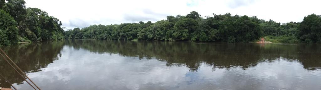 Introduction et présentation du dossier d'AGTER sur la gouvernance des forêts au Cameroun