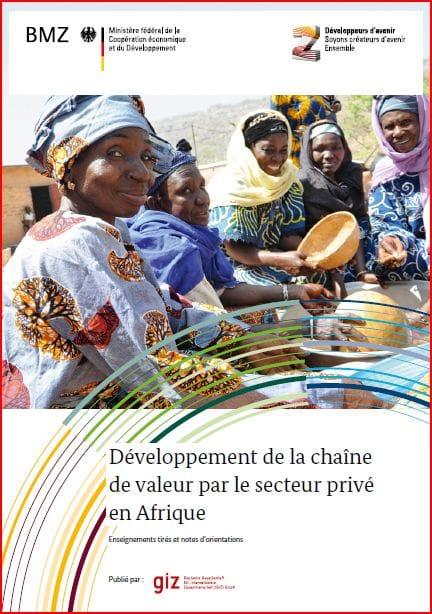 Rapport GIZ : Développement de la chaîne de valeur par le secteur privé en Afrique