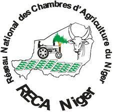 RECA-Niger :