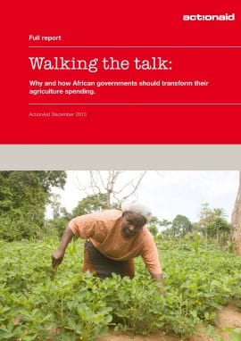 Walking the talk: Why and how African governments should transform their agriculture spending