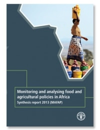 MAFAP : Monitoring and analysing food and agricultural policies in Africa Synthesis report 2013