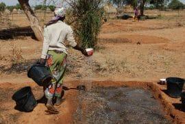 Conseils d'OP à OP : Le warrantage raconté aux paysans par des paysans