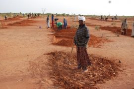 Future Agricultures blog : African agriculture is growing