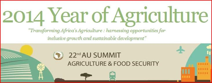 Site web - NEPAD :  2014 Year of Agriculture