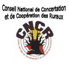Presse Sénégal: Politique agricole - Le CNCR prêt à accompagner le changement de cap