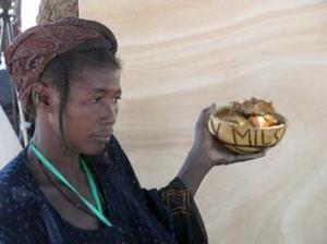 Comité Ouest Africain des Semences Paysannes (COASP): Déclaration de Djimini 2014