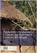 Public Policy Responses for a Climate Resilient Green Economy in Ethiopia
