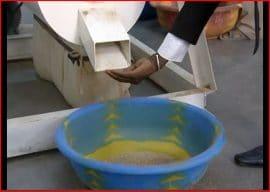 Vidéo : valorisation des céréales locales en panification (Sénégal)