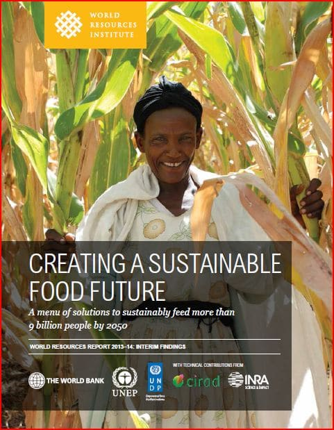 Rapport : Creating a sustainable food future