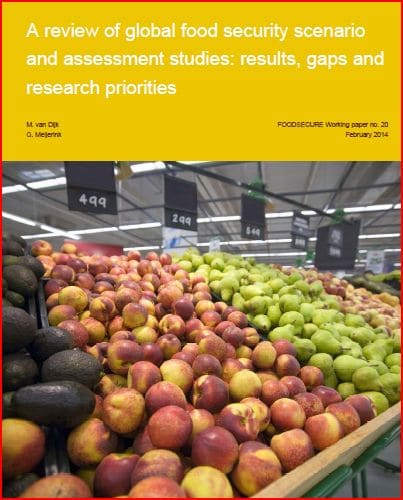 Etude : A review of global food security scenario and assessment studies