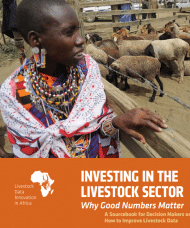 Rapport: Investing in the livestock sector: why good numbers matter