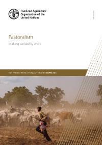 Pastoralism - Making variability work