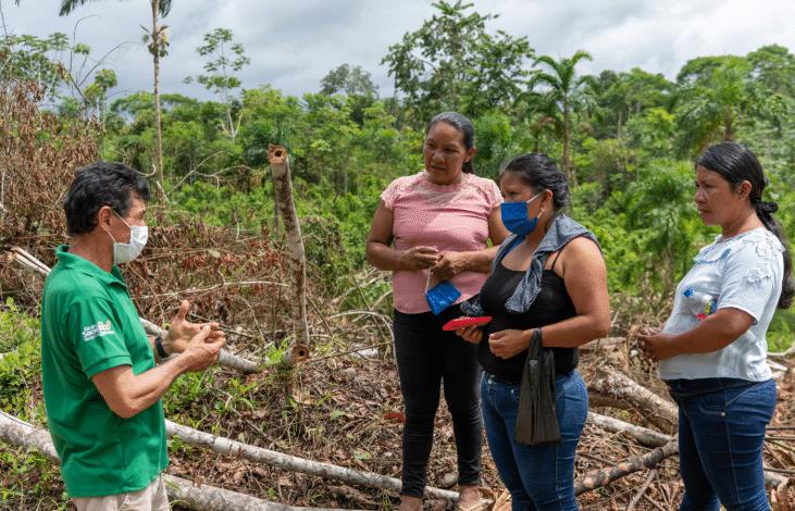 Concilier protection des forêts et développement économique