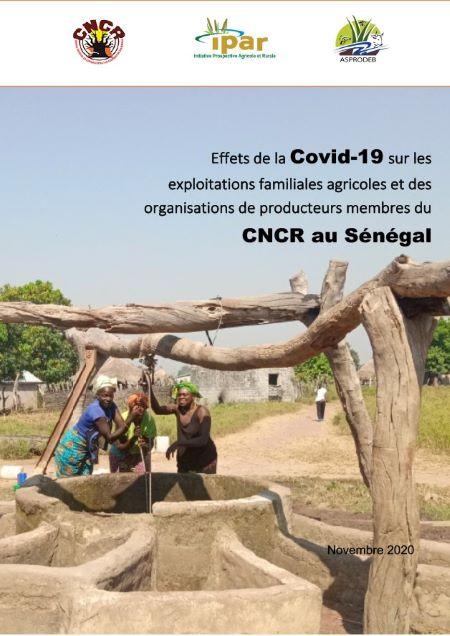 Effets de la Covid-19 sur les exploitations familiales agricoles et des organisations de producteurs membres du CNCR au Sénégal