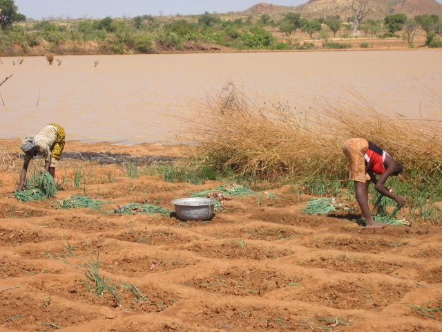 Formation agricole et rurale : de quoi parle-t-on ?