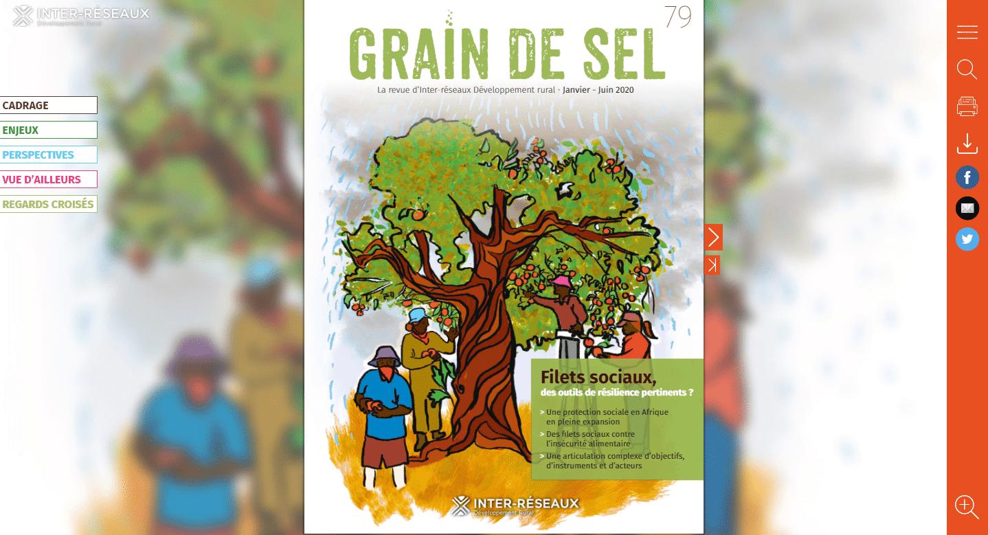 Magazine interactif : Grain de Sel n°79 sur les filets sociaux