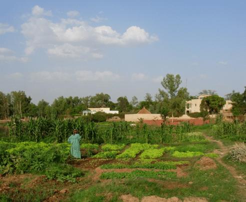 Penser la place des femmes rurales des Suds dans la justice climatique