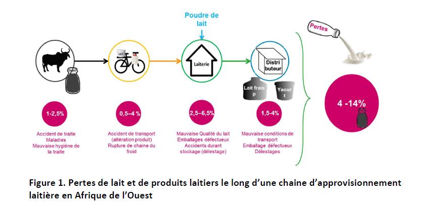 Rapport final du projet REGAL - Pertes et gaspillage dans la filière lait local