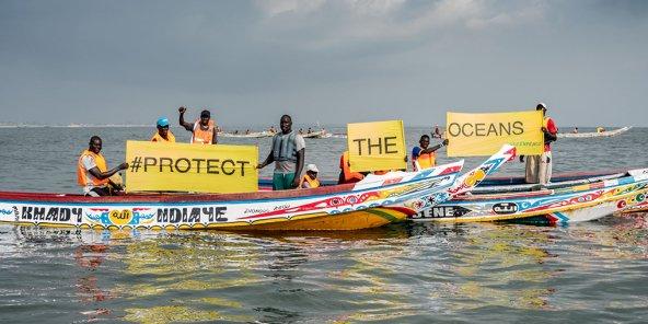 Huile et farine de poisson : quand l'Europe affame l'Afrique de l'Ouest