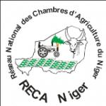 RECA Niger