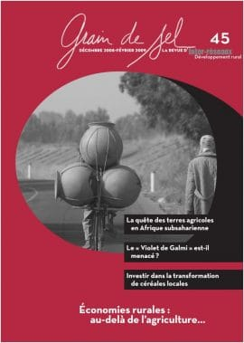 45 : Economies rurales : au-delà de l'agriculture...