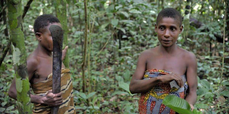 """Survival International dénonce la """"colonisation verte"""""""