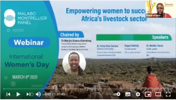 Vidéo du webinaire sur la Journée internationale de la femme du Panel Malabo Montpellier